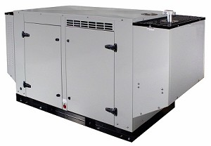 30 KW Propane or 28 KW Natural Gas <br> 208V Output <br> UL-2200 Certified <br> Power Generator <br> Made in USA! <br> FOB Elkhart, Indiana <br> <b> Click here for more information </b>